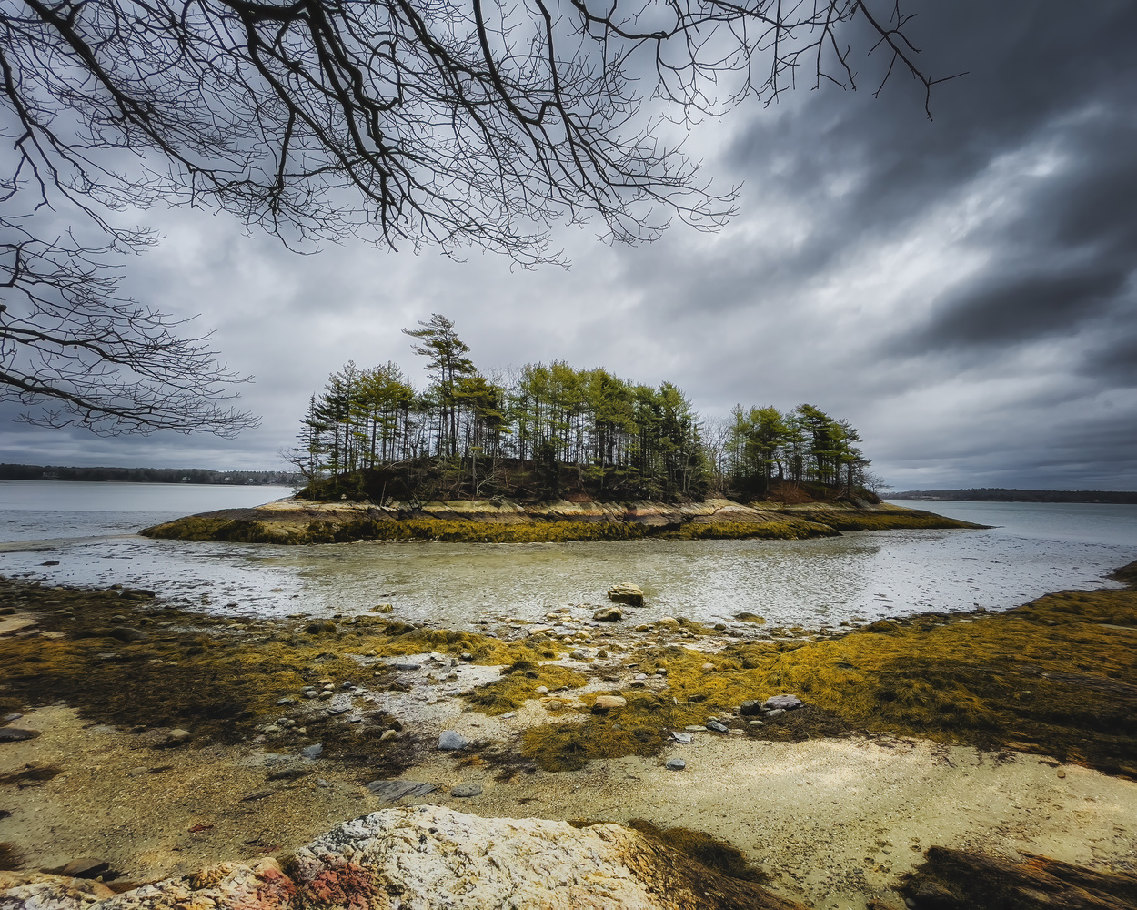 Wolfe,s Neck Park , Freeport, Maine by Skyler Ewing