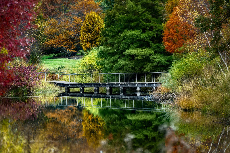 Chicago Botanic Garden by Skyler Ewing