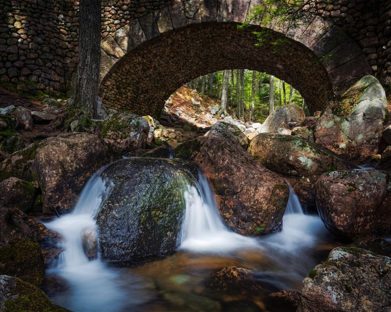 Acadia National Park by Skyler Ewing