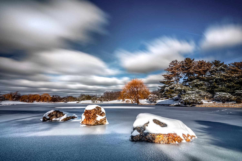 Frozen by Skyler Ewing