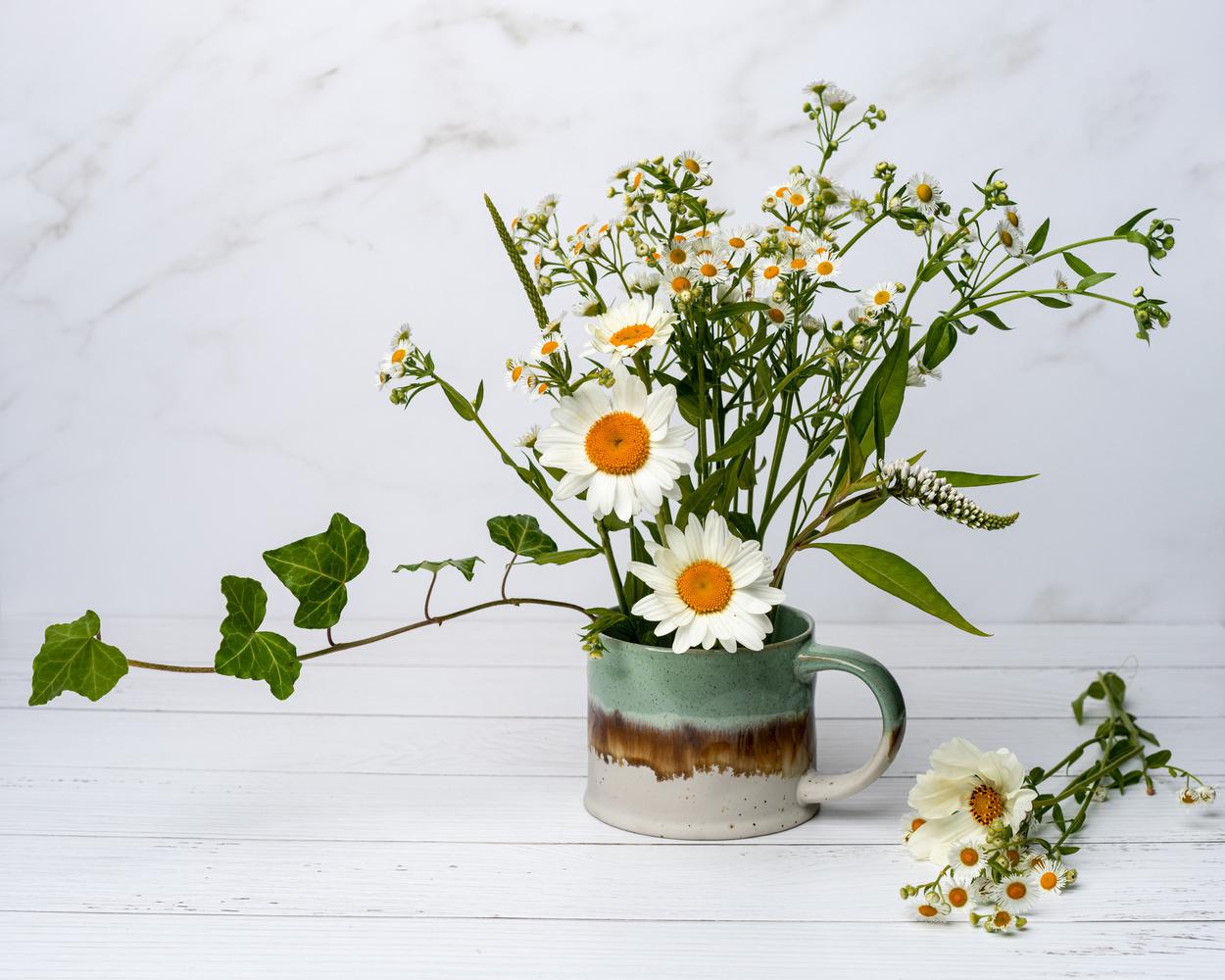 Flowers from my garden by Skyler Ewing