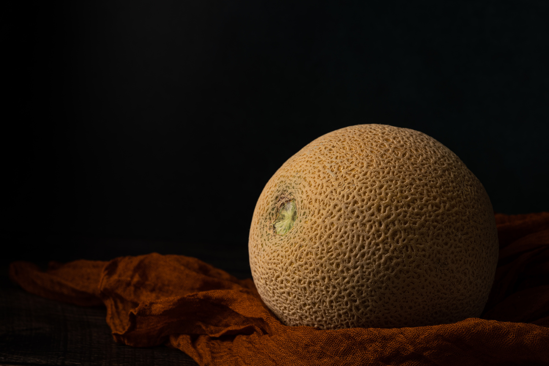 Melon by Skyler Ewing