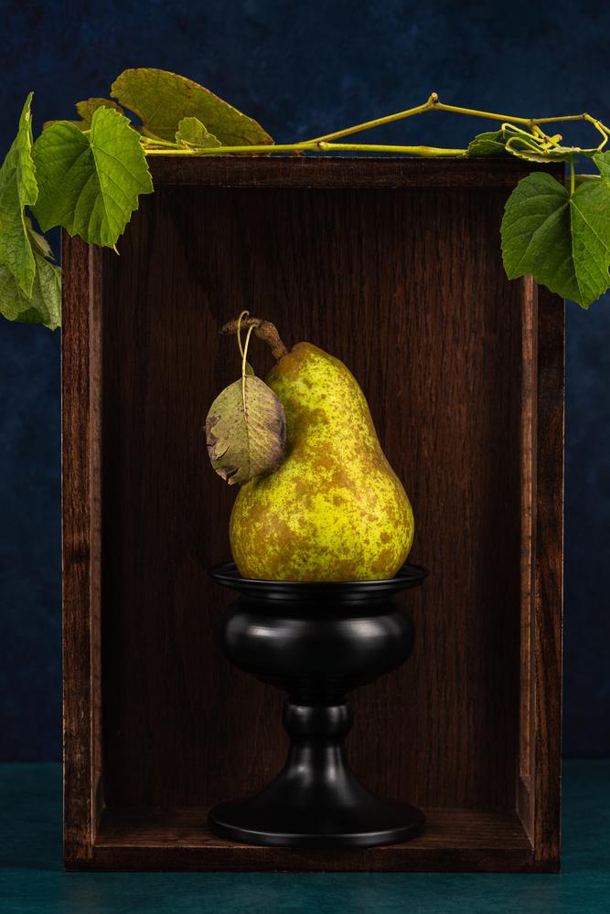 Pear by Skyler Ewing