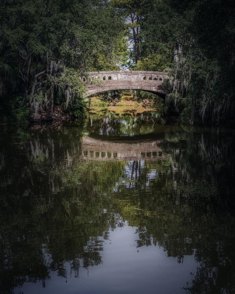 Bridge by Skyler Ewing