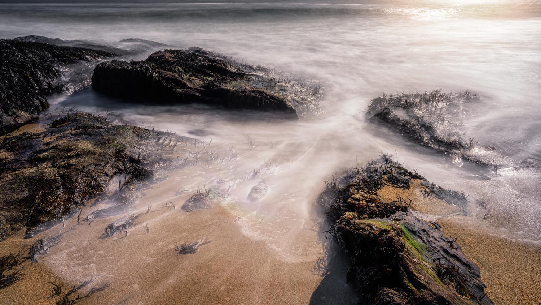 Ocean by Skyler Ewing