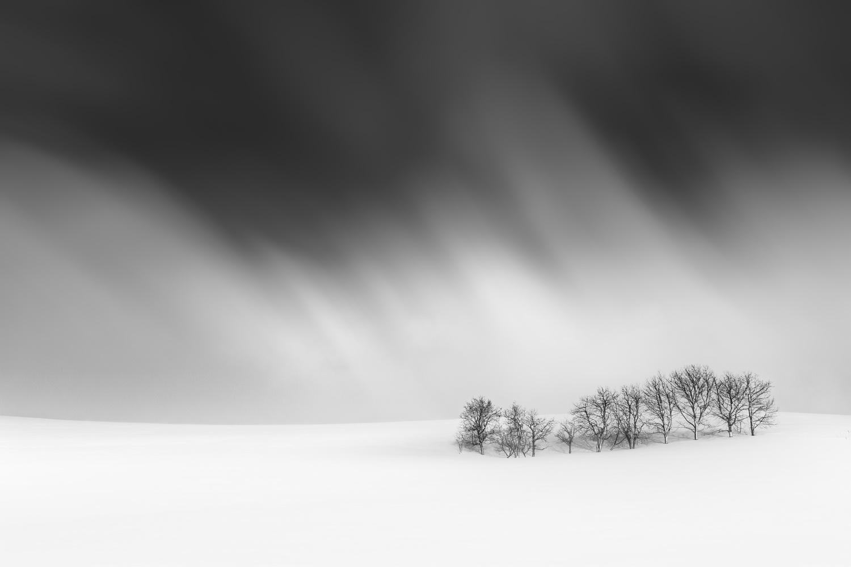 Flow by Roy Iwasaki