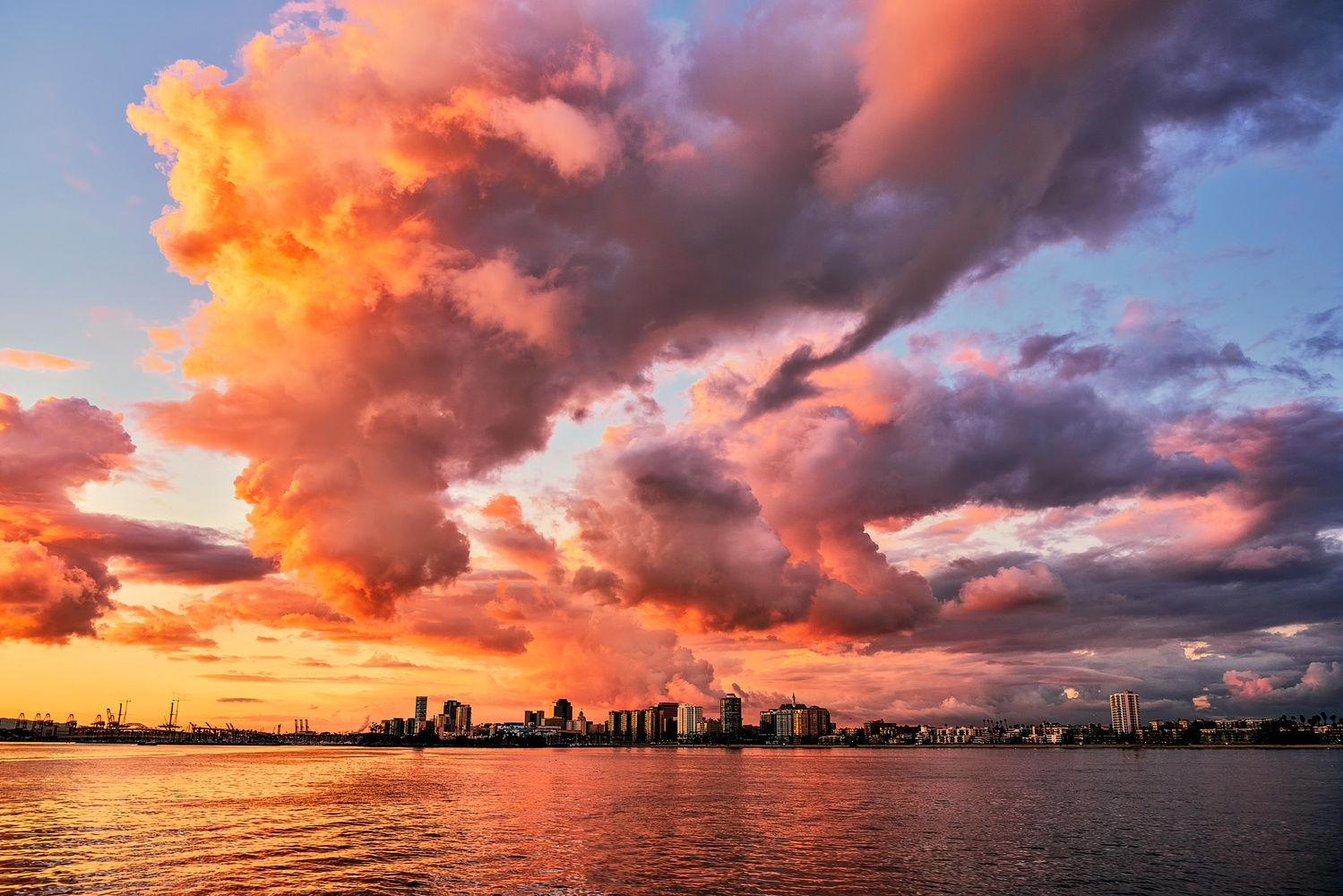 City views by Josh Tomsha