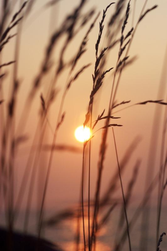 Halifax Sunset by David J. Crewe