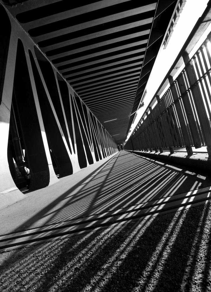 (B)ridge by Chris Paloma