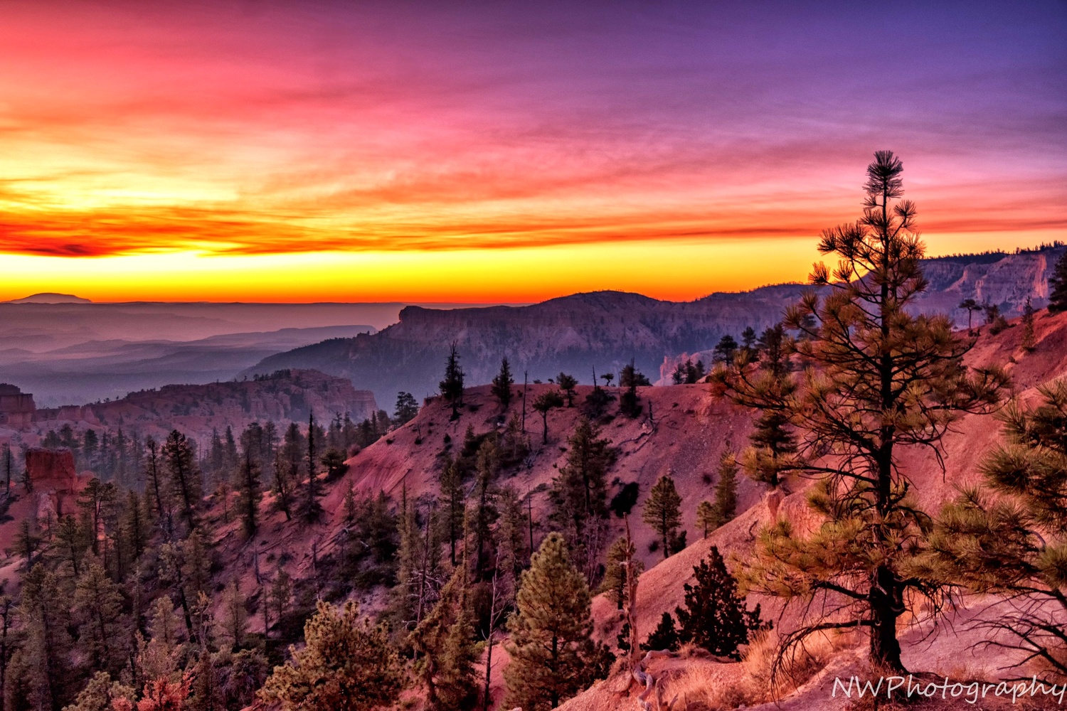 Bryce in the Morning by Nathan Wasylewski