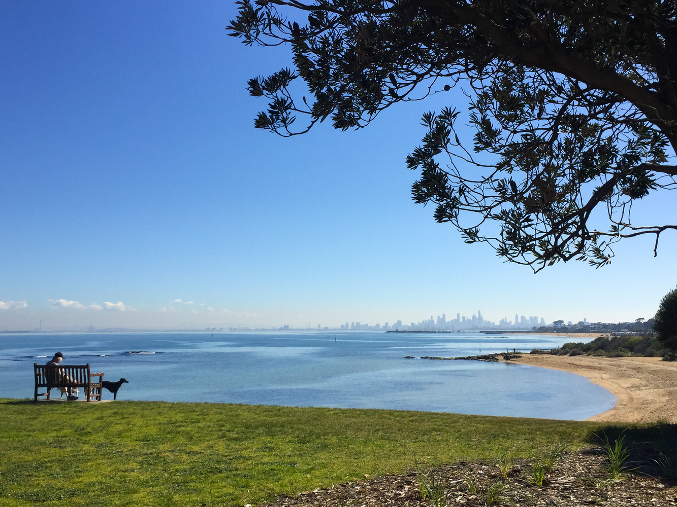 Melbourne on a glorious spring day by Marian Pollock