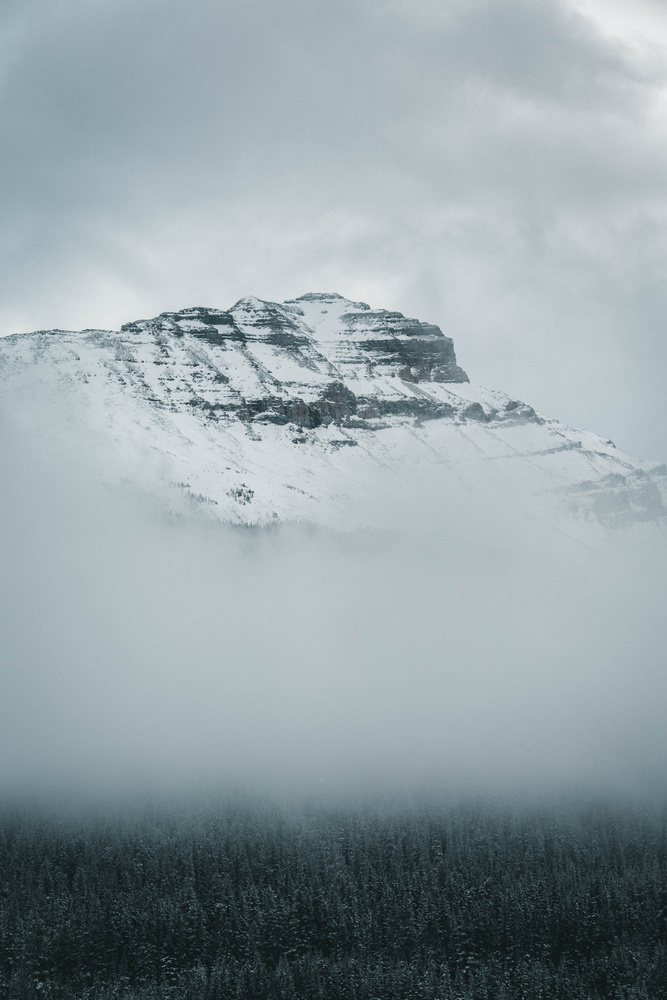 Rising from the fog by Robin Férand