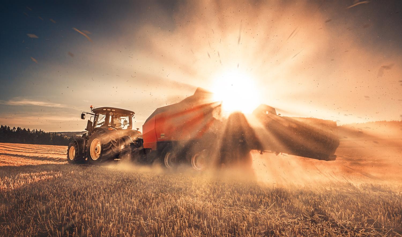 -the harvest- by Alex Sob