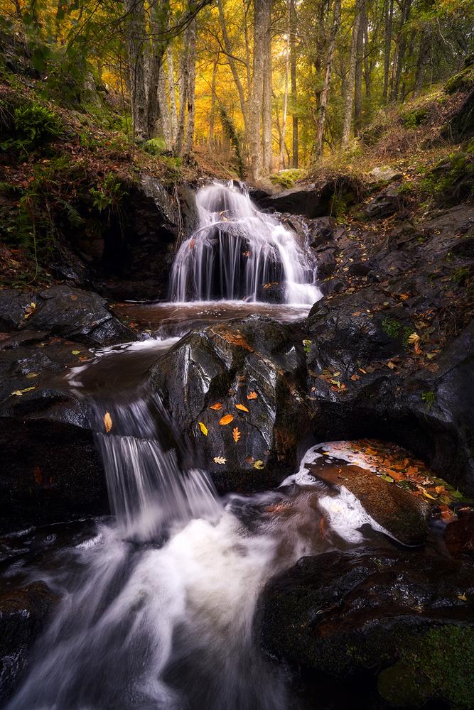 Autumn Flow by Juan Yelin