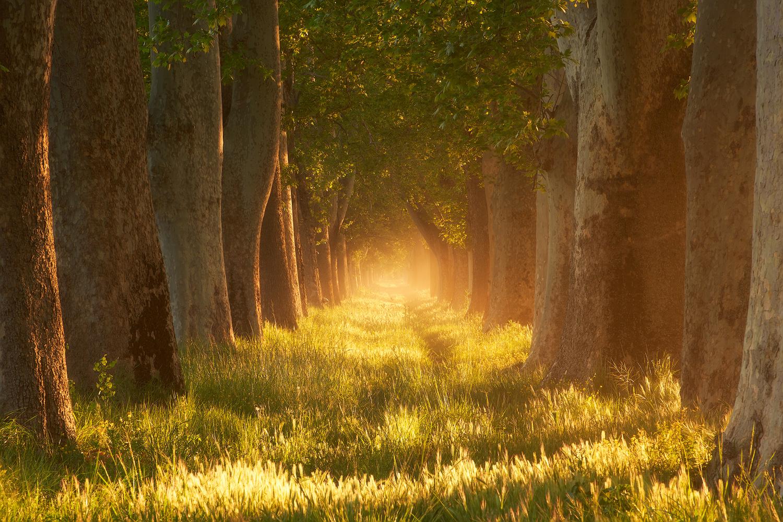 Endless road by Prince Berkoh