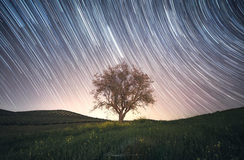 Rain, Stars, Eternal by Manu García