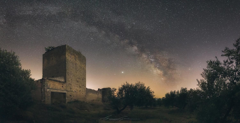 Hidden in the olive grove by Manu García