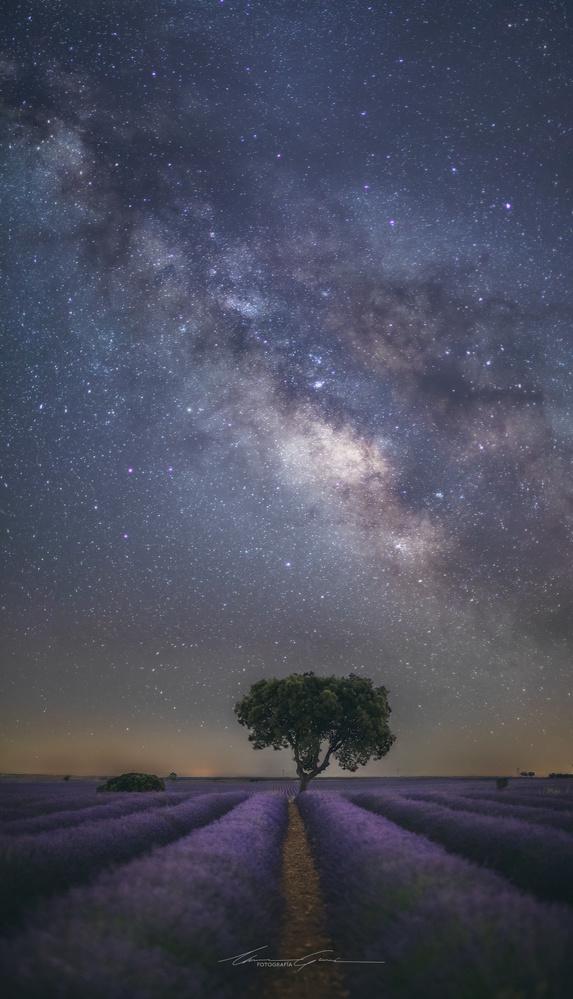 Stars on 50 (mm) by Manu García