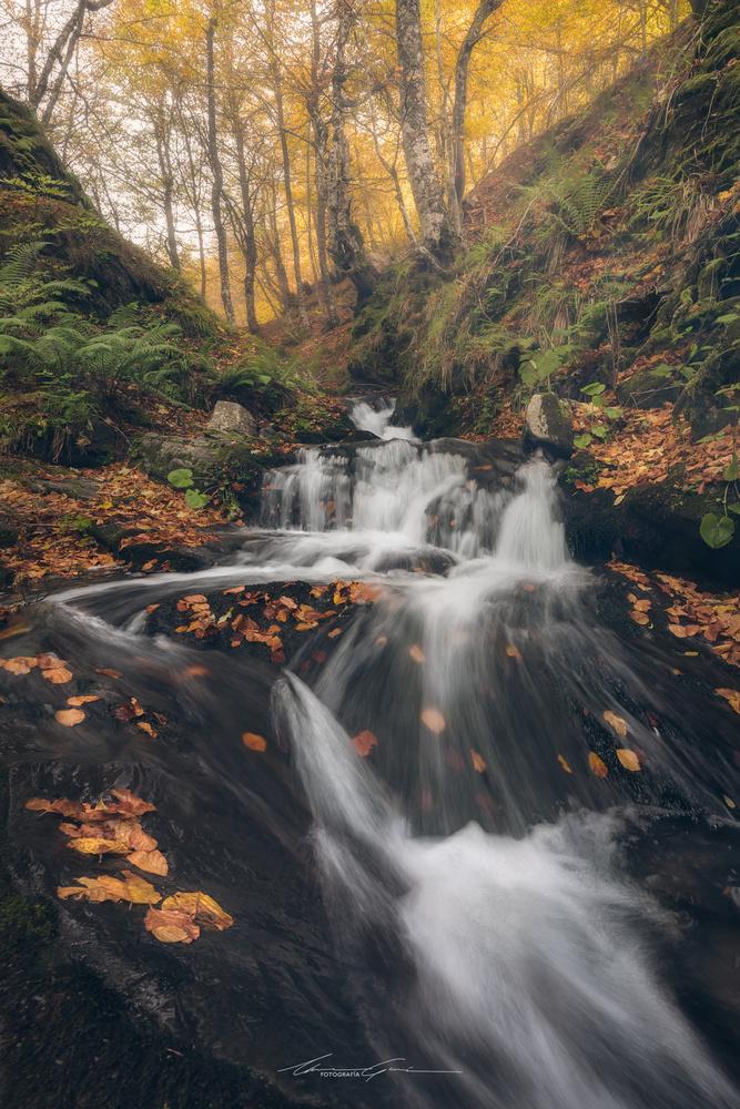 Autumn slide by Manu García