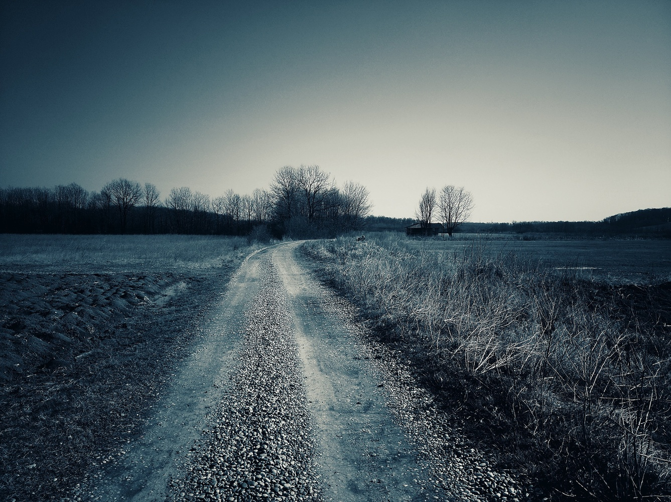 Road by Goran Avramovic