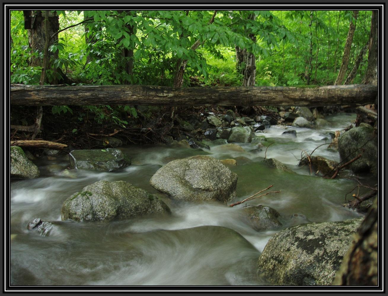 Stoney Brook 2014 by Michael Warner