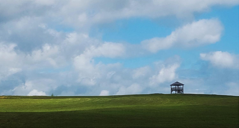 Watchtower by Michael Warner