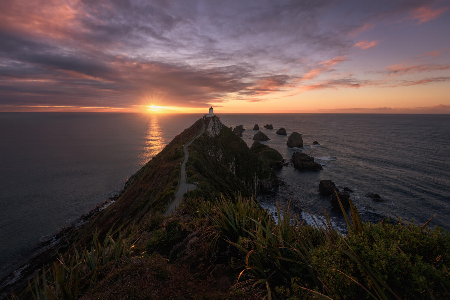 Nugget Point Lighthouse by Hugo Valle