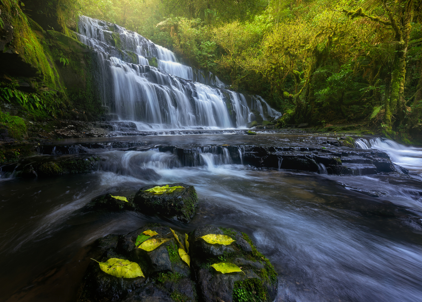 The Catlins by Hugo Valle