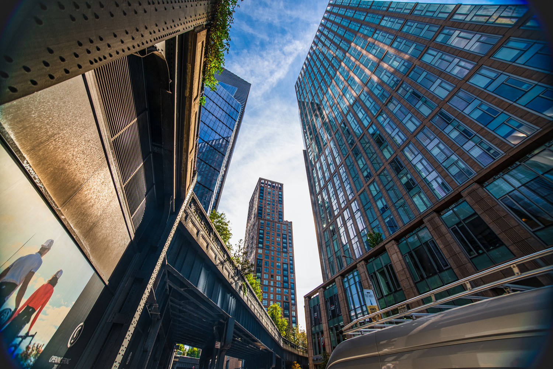 New York Skyscrapers by Gabriel Hershewe