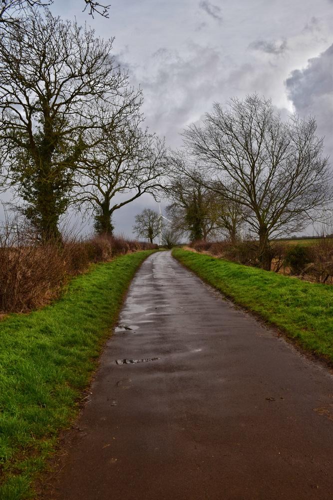 Winter Walk by Callum Tiney