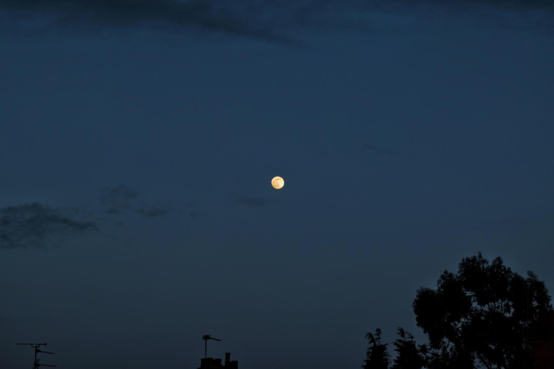 Full Moon by Callum Tiney