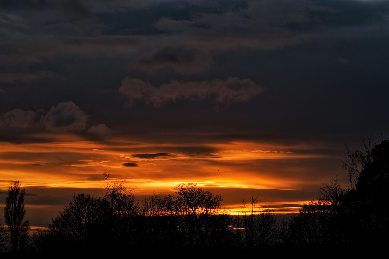 Sunset Silhouette by Callum Tiney