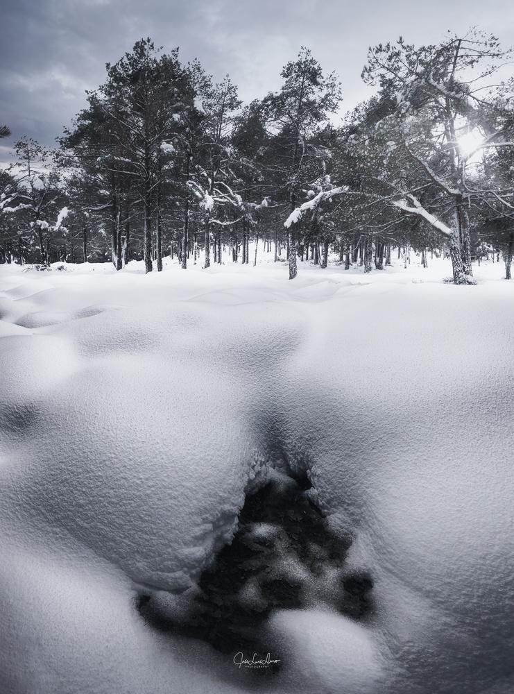 Snow textures by Jose Luis Llano