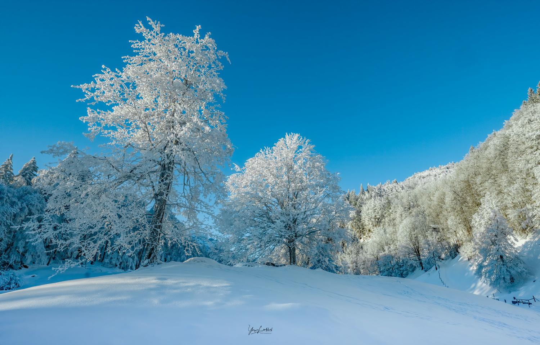 Frost by Yaz Loukhal