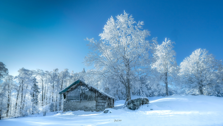 Frosty morning by Yaz Loukhal