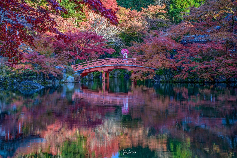 Kyoto's Autumn colours by Yaz Loukhal