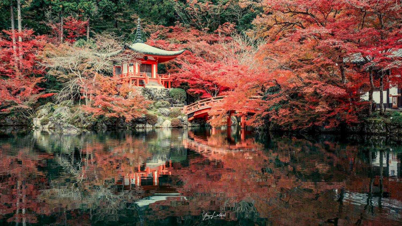Kyoto's Autumn explosion by Yaz Loukhal