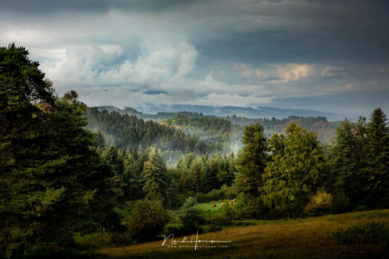 Landscape in the rain by Nando Harmsen