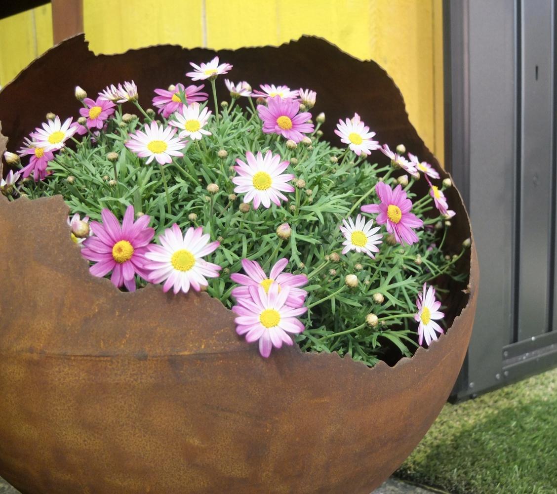 Flowers in vase by Vania Silva Mota
