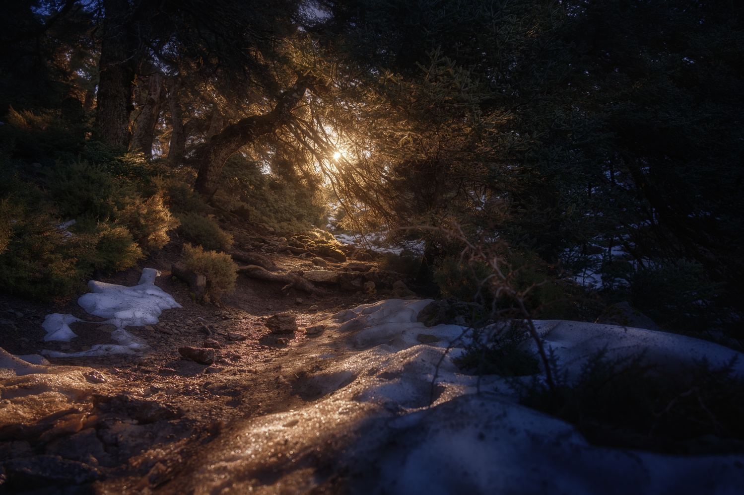 Sunrise after a snowfall in the Sierra de las Nieves, Málaga by DaniGviews /Daniel