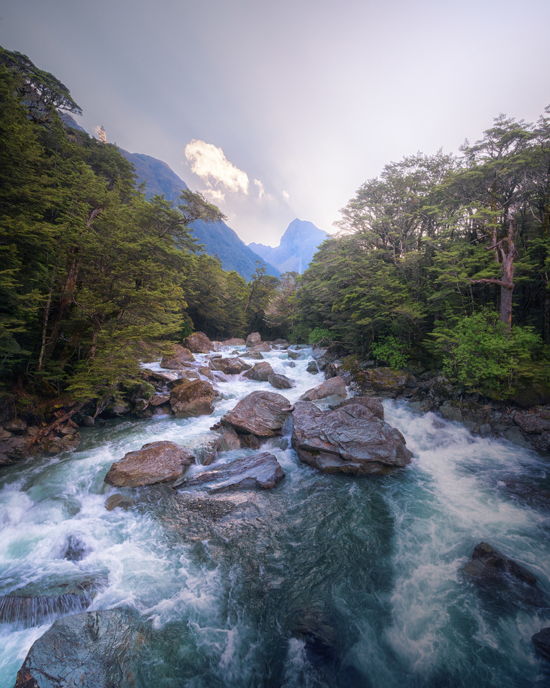 River in Routeburn Track, New Zealand by DaniGviews /Daniel
