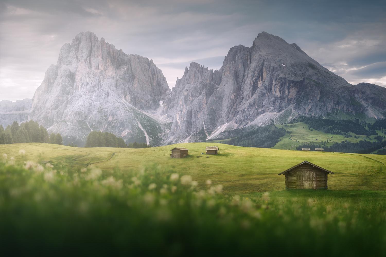 Alpe Di Suisi by DaniGviews /Daniel