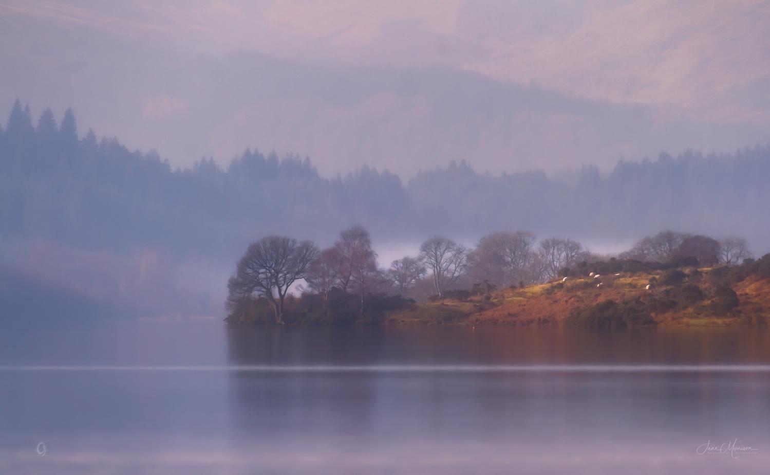 Misty Morning by Jane Morrison