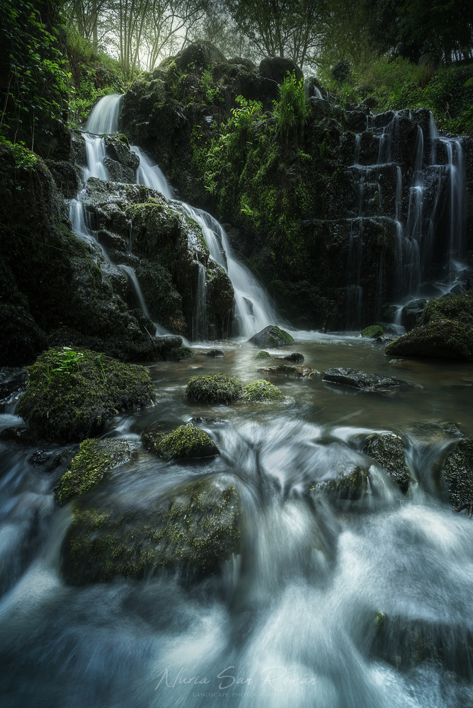 Sanctuary of Nymphs by Nusan Photography