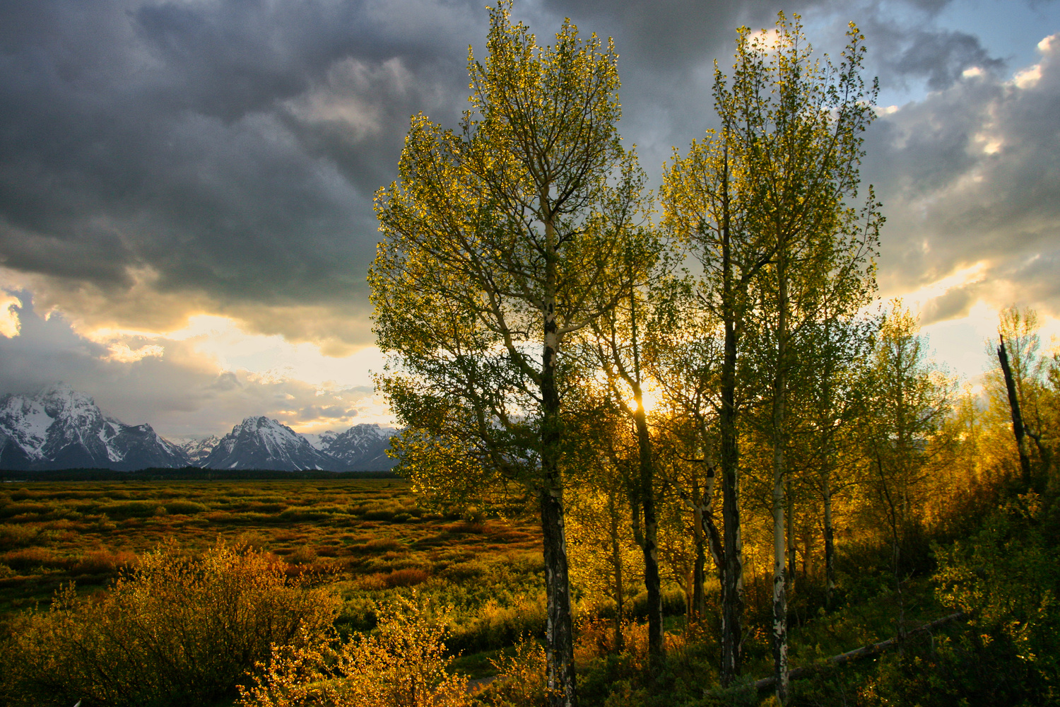 Sunset-Grand Teton by J. Daniel Jenkins