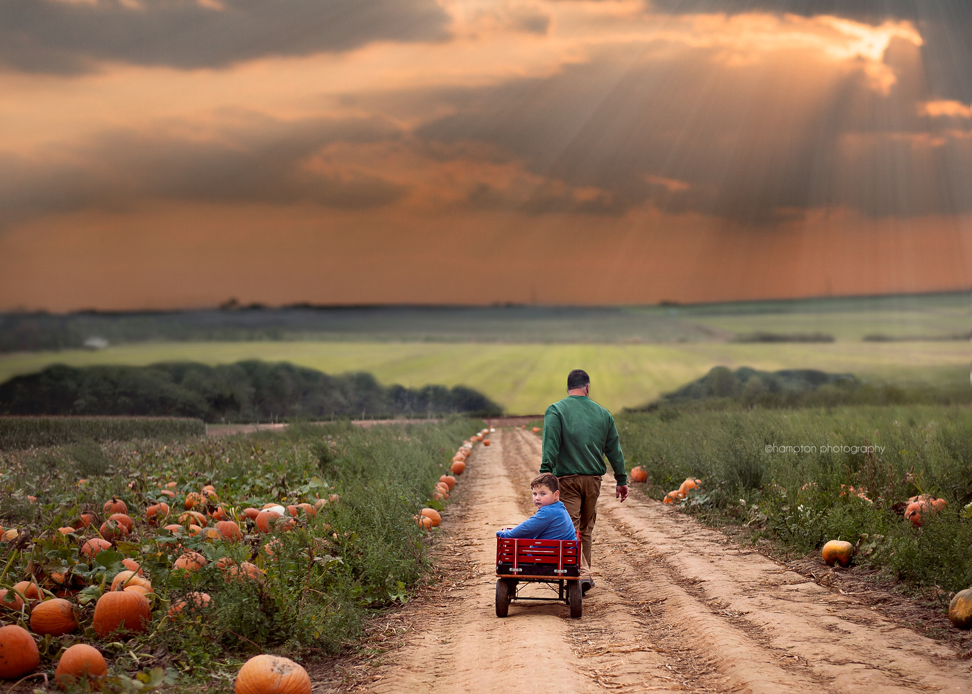 Pumpkin Picking with Dad by Corinne Rogers