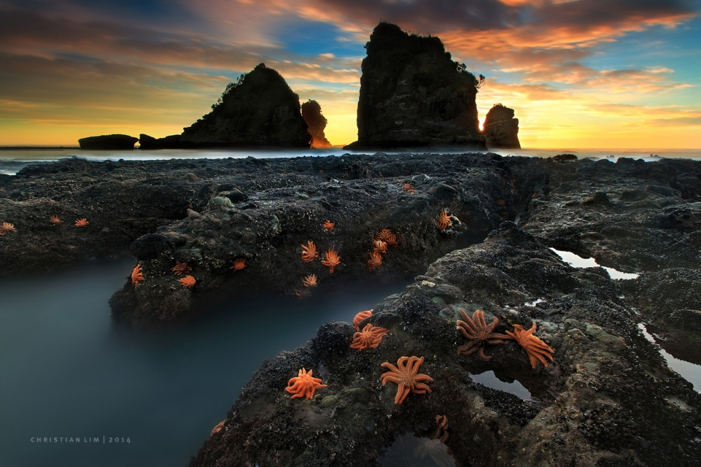 Counting Stars by Christian Lim