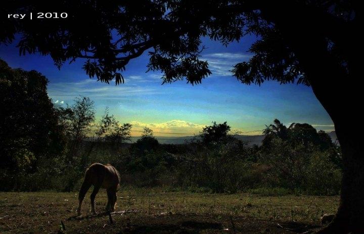 Landscapes by Reynante Tomasa