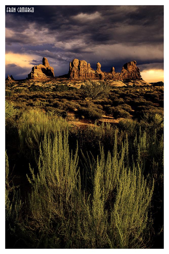 Arches National Park by Francisco Eduardo de Camargo