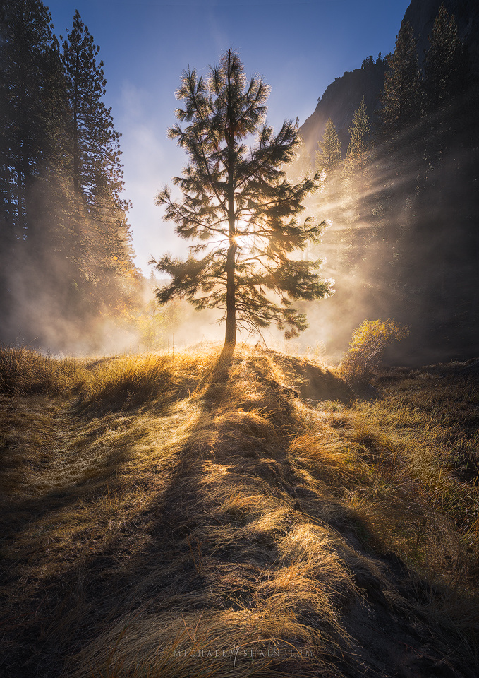 The Valley of Light by Michael Shainblum
